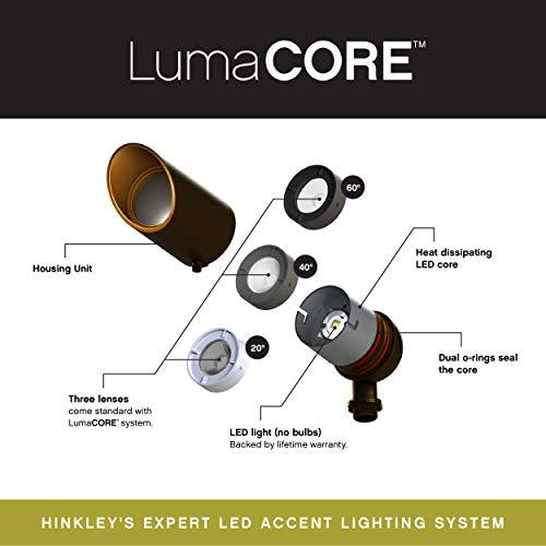 Hinkley Landscape Lighting Hardy Island LED Spot Light – Spotlight Important Landscape Features and Increase Home Security, LED Spot Light, Matte Bronze Finish, 1536MZ-12W3K