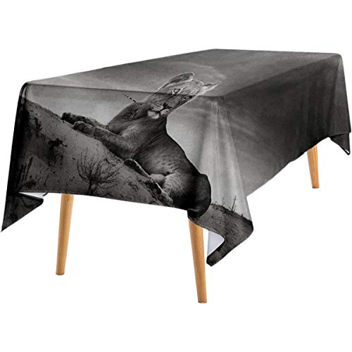 LanQiao Black and White Rectangular Tablecloth Wild Lioness on Desert Sand Dunes African Animal Safari Image Print Bistro Party tablecloths 52'x70' Black White Grey.jpg