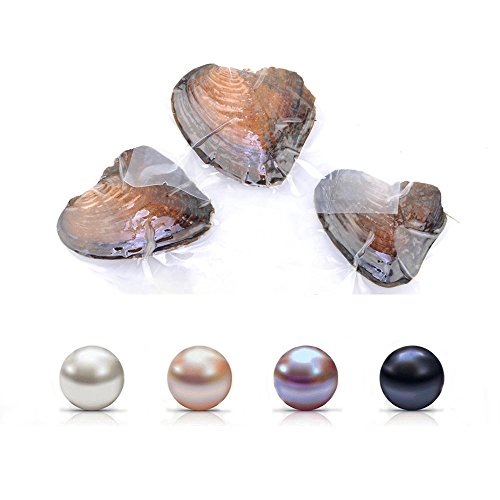 Oyster Pearl Freshwater Cultured Oval Pearls for Jewelry Making with White/Pink/Purple/Black, Birthday Gifts Handmake DIY Jewelry Making Oyster Pearl Bulk (6.5-7.5mm 4PC)