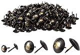 IPEA Chiodi da Tappezzeria – 500 pezzi – Bullette Borchie Decorative per Mobili Arredamento Abbigliamento – Spille Puntine in Metallo per Poltrone – Colore Bronzo e Oro – 9 x 12 mm