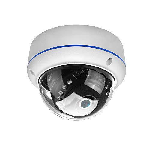 CXZM 1080P IP-Kamera-Hauben-Überwachungskamera Mit 3.6MM Objektiv IP66 Imprägniern Pan Tilt...