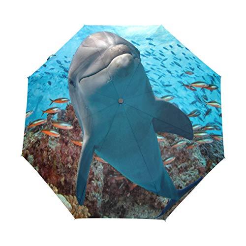 Bigjoke Regenschirm mit 3 Falten, automatischer Schließung, ideal für Jungen, Mädchen, Männer, Frauen