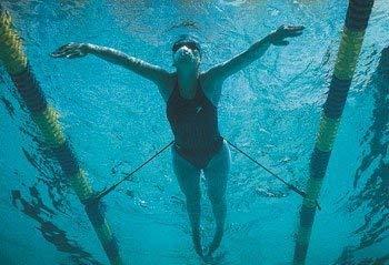 NZ Manufacturing Strechcordz Stationary Swim Trainer S121