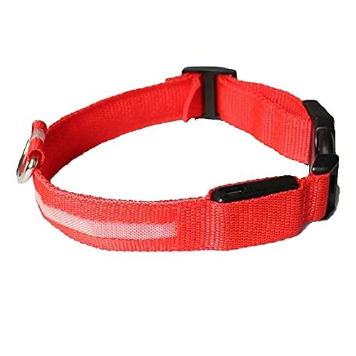 MY GIFT TREE Collar LED para perro con linterna USB recargable para perro con resistente al agua, reflectante, ajustable y luminoso para visibilidad y seguridad (rojo)