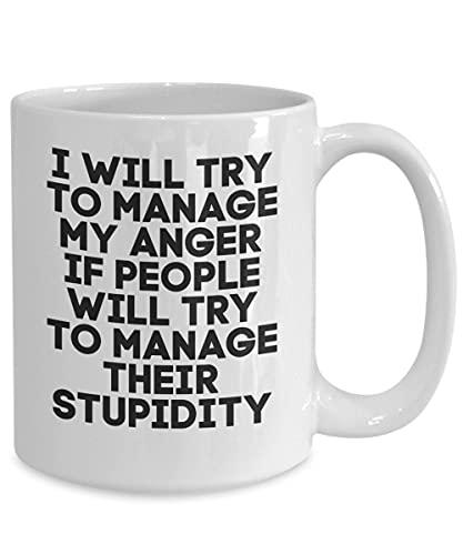 Taza de gestión de la ira, taza de café de gestión de la ira, gente estúpida, taza divertida, taza de té, día de San Valentín