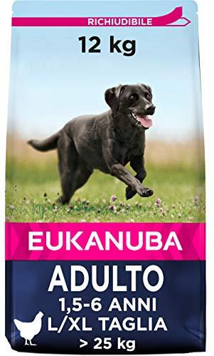 Eukanuba Active Adult - Alimento Completo per Cani Adulti di Taglia Grande, Crocchette al Pollo - 12 Kg
