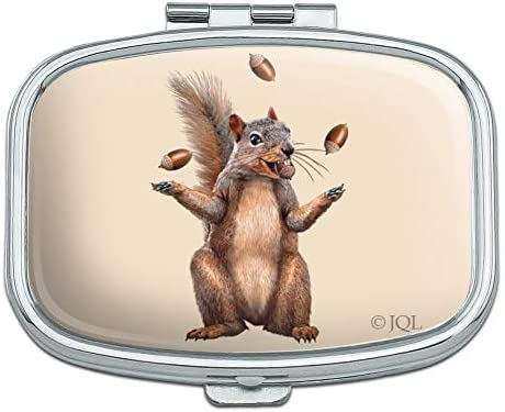 Squirrel Juggling His Nuts Crazy Funny Rectangle Pill Case Trinket Gift Box product image
