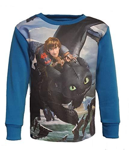 Dragons Kinder Sweatshirt Toothless Hiccup Gr. 116 cm, blau