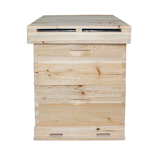 Bauernhof Hause Haustier Nutztier Tier Bienen Zucht Züchten Bienenzucht Imkerei Ausrüstung Zubehörteil Beekeeping Bienenkasten Bienenkorb Bienenstock doppelte Schichten Spießtannenholz