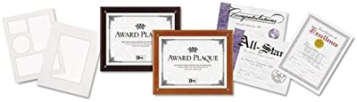 DAX N100MT Plaque-in-an-Instant Kit w/Certs & Mats,
