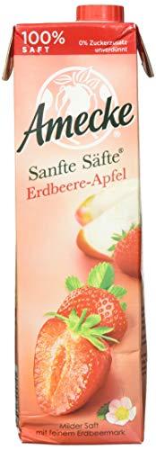 Sanfte Säfte Erdbeere-Apfel 1x1L EW