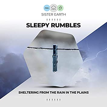 ! ! ! ! ! ! Sleepy Rumbles Sheltering from the Rain in the Plains ! ! ! ! ! !