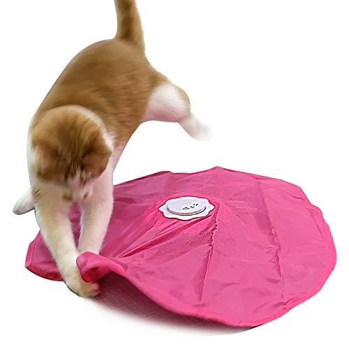 Interactive Cat Play-Attrapez la queue-électrique, plume rotative, mouvement, automatique, meilleure souris sous couverture sous couverture jouet pour chat
