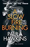 A Slow Fire Burning: The addictive new Sunday Times No.1 bestseller from the author of The Girl on the Train (English Edition)