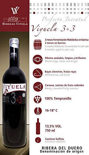 VIYUELA 3+3 - VINO TINTO ROBLE AUTOR - RIBERA DEL DUERO