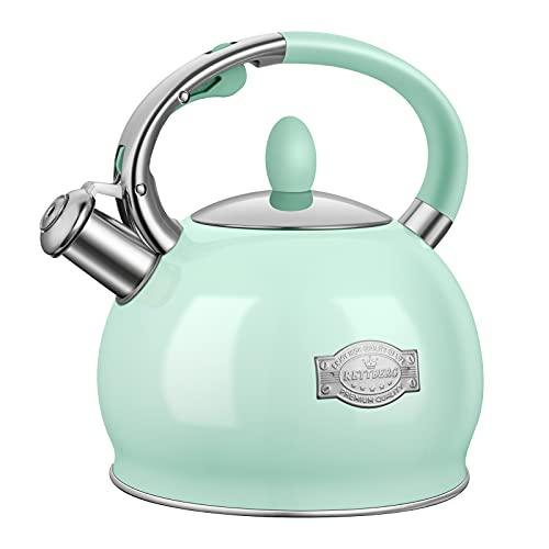 RETTBERG 2.64-Quarts Tea Kettle for Stovetop Food grade stainless steel Teapot with Ergonomic Handle (Mint Green)