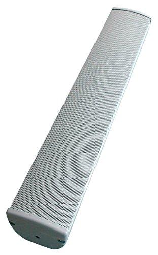 Visaton EZ 40.7 Weiß - Lautsprecher (2-Wege, 1.0 Kanäle, Verkabelt, 230-20000 Hz, Weiß)