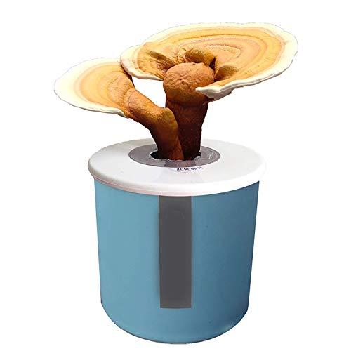Paddestoel kweekset binnen, Mushroom Spawn Seeds Starter Kit, kweek je eigen champignons binnenshuis in ongeveer 10 dagen en geniet van het leven in de natuur L
