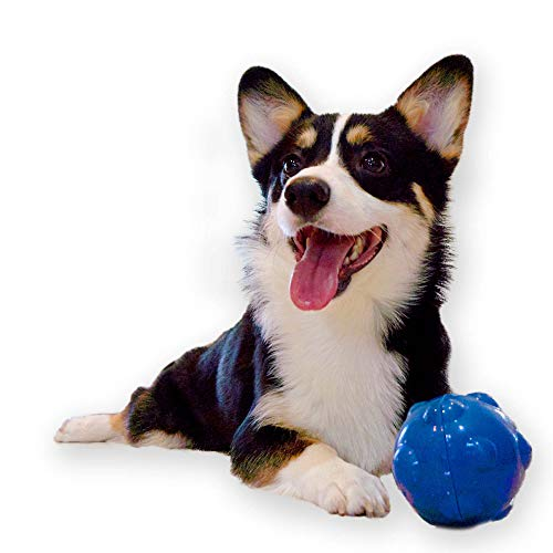 Pet Craft Supply Electronic, Wiggling Wobbling Crazy Ball Electronic Dog Toy