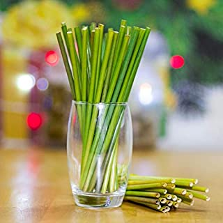 New 2019 Premium Grass Straws 100% Eco Friendly Biodegradable Natural Stems Pack of 100 Organic Veggie Straws for Toddlers