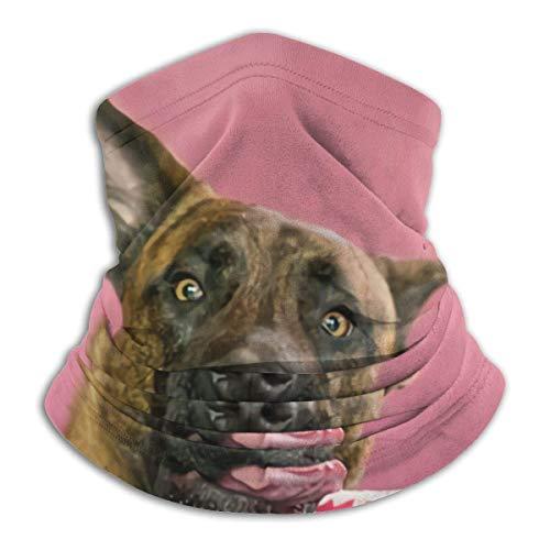 Fleece Neck Warmer Holländischer Schäferhund will Donut-Tiere Wildlife Dog Neck Gaiter Tube, Ohrwärmer Stirnband und Gesicht, Sturmhaube und Mütze haben