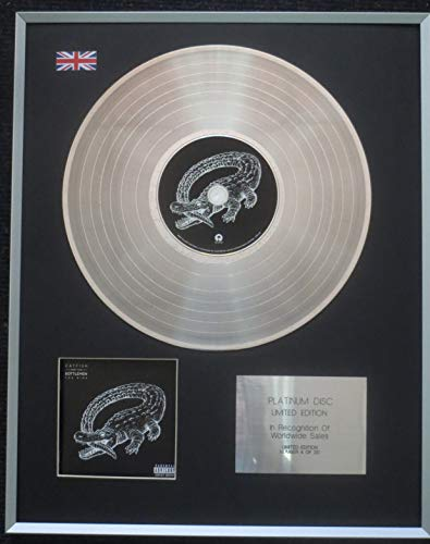 Century Music Awards - Catfish And The Bottlemen - Limited Edition CD Platinum LP Disc - The Ride