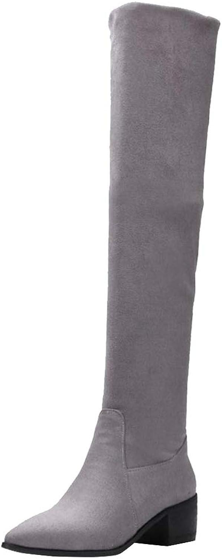 FANIMILA Women Fashion Pointed Toe Stretch Boots