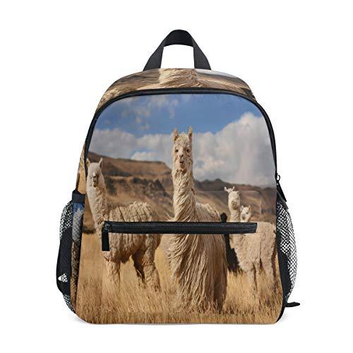 Kids Backpack School Bags for Girls Alpacas in Andes Mountains Children's School Backpack Book Bag