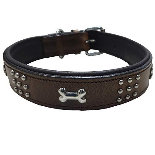 Schnüffelfreunde Lederhalsband Hund mit Applikation und Nieten I Hundehalsband Nala aus Leder (L - 36-45cm)
