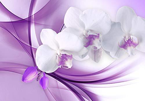 wandmotiv24 Fototapete Orchidee Blume Lila, XL 350 x 245 cm - 7 Teile, Fototapeten, Wandbild, Motivtapeten, Vlies-Tapeten, Abstrakt, Knospe, Floral M1118