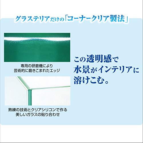 ジェックスグラステリア300水槽フレームレス水槽
