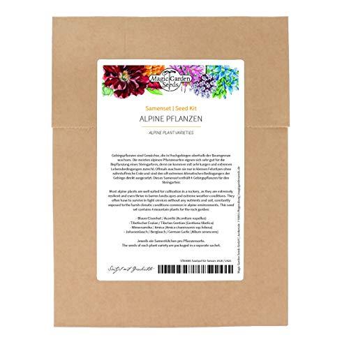 Alpine Pflanzen - Samenset mit 4 Gebirgspflanzen für den Steingarten