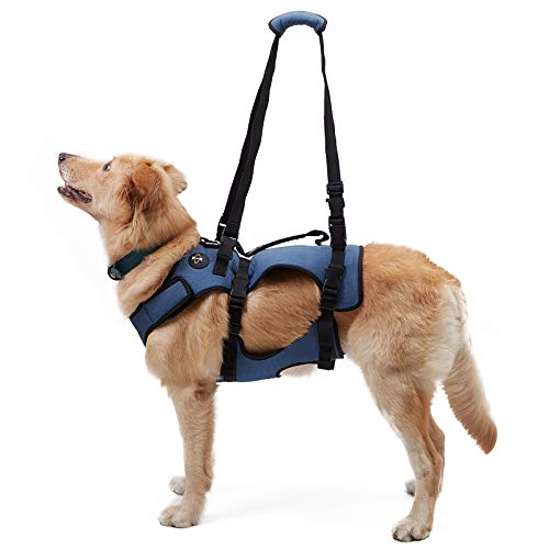 COODEO Dog Lift Harness, Support & Recovery Sling, Pet Rehabilitation Lifts Vest Adjustable Breathable Straps for Old, Disabled, Joint Injuries, Arthritis, Paralysis Dogs Walk (XXLarge)