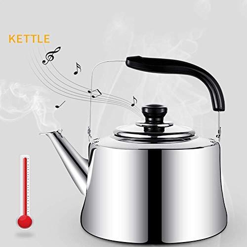 Chen Kettle 85855