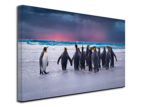 Declina afbeelding met dieren, wanddecoratie, vlies-canvas, muurschildering, 50 x 30 cm 150x100 cm Meerkleurig