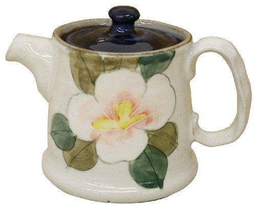 couleur pot de fleur (avec grillage) 43240 (Japon import / Le paquet et le manuel sont ?crites en japonais)