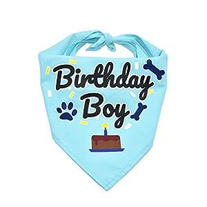 Bubblepup Dog Birthday Bandana, Dog Birthday Bandana boy Girl, Happy Birthday Dog Bandana for Girls and Boys