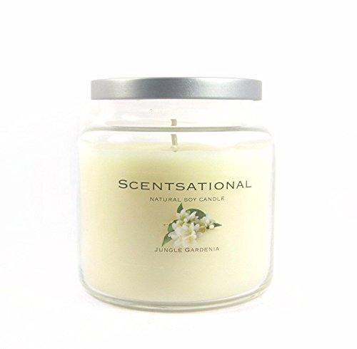 Scentsational JungleGardenia Candle, jar, Ivory