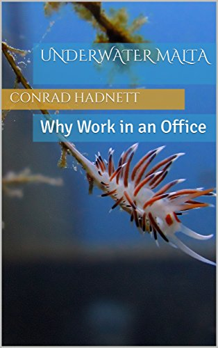 Underwater Malta: Why Work In An Office (English Edition)