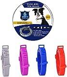 sonbrille Zeckenhalsband für Hunde, Verstellbar Zecken Halsband für Hunde und Katze, Wasserdicht Hund Flohhalsband, Natürliches Präventionshalsband Gegen Zecken