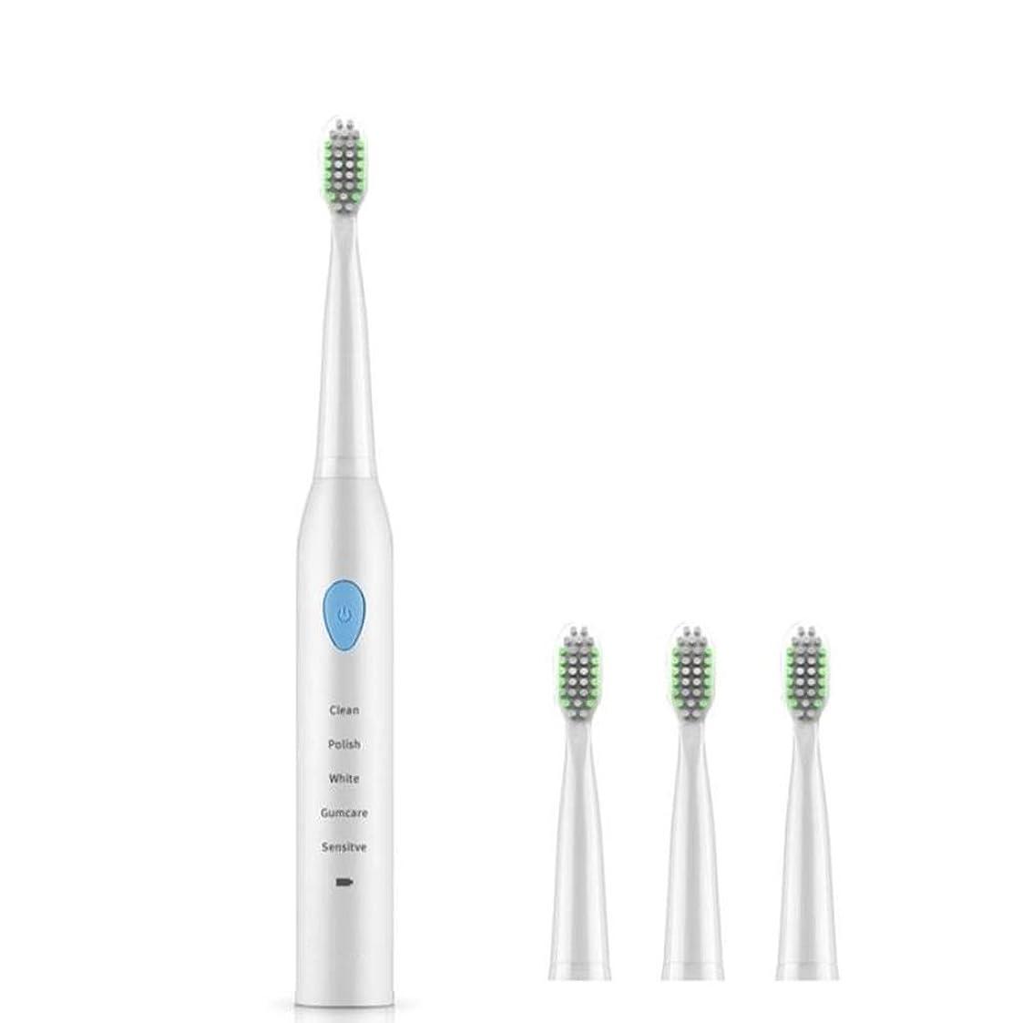 モットー魔術支給自動電動歯ブラシ、USB充電、ユニバーサルソフトヘアマイナスイオンクリーニング (色 : 青)