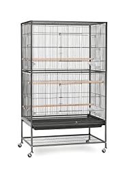 Cages & Accessories