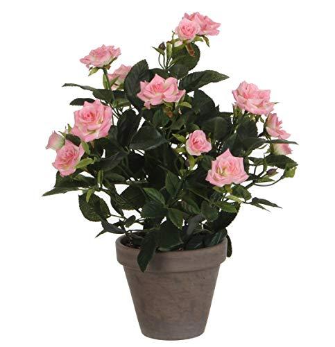 MICA Decorations 948332Flores, Rose, Color Rosa