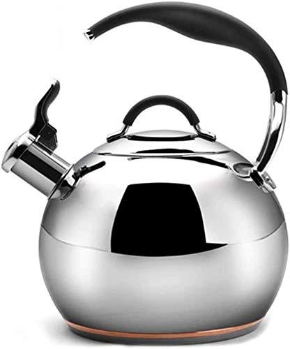 Bouilloire induction Théière en acier inoxydable Thé de thé Bouilloire Thé Pot pour cuisinière Top Top Water Bouilloire Anti-chaude Poignée anti-chaude avec look miroir argent 15.5x14cm WHLONG