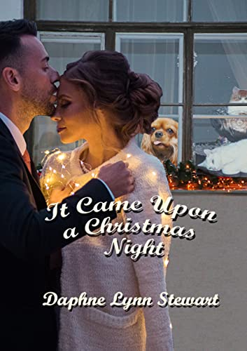 It Came Upon A Christmas Night: Holiday Collection Book 4 (English Edition)