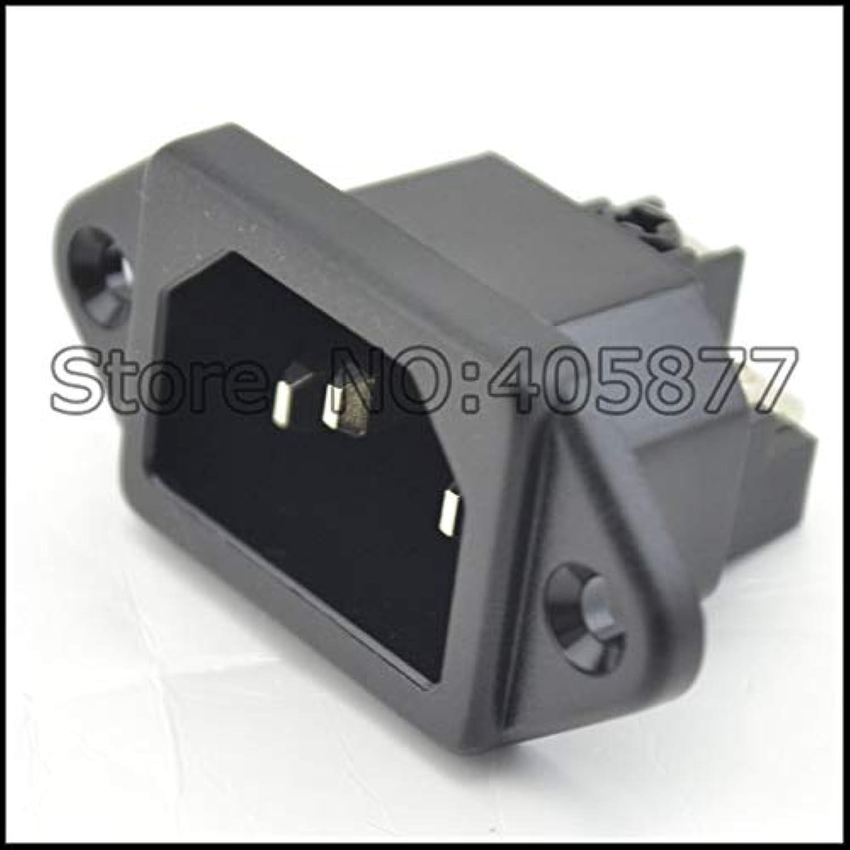 Laliva Plugs  2pcs Rhodium Plated IEC Inlet Mains Power Inlet Socket Male Panel Entry Plug HiFi  (Standard  IEC ocket)