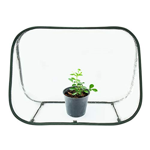 """Comlax Mini Greenhouse Pop up Plant Grow House Portable for Indoor & Outdoor Garden Backyard Flower Pot Cover/Shelter 35""""x20""""x24"""""""