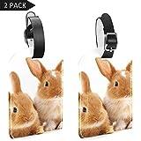 LORVIES - Etiquetas para equipaje de Pascua, diseño de conejo, 2 unidades