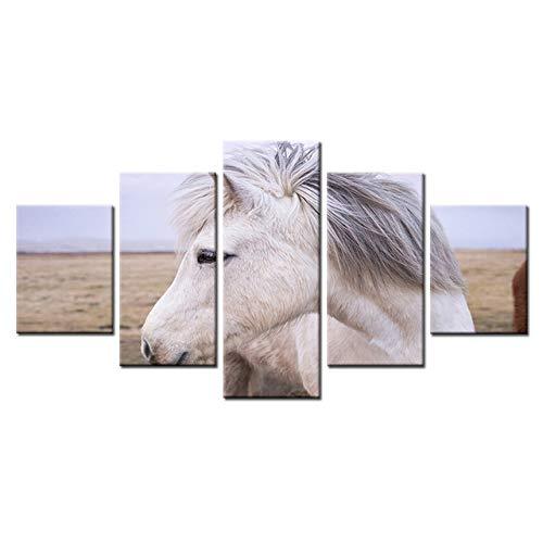 FGVBWE4R Gedruckt Rahmen Malerei HD Wandkunst Modulare 5 Panel Weiß Pferd Bilder Dekoration Wohnzimmer Leinwand Moderne Poster-XXL