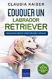 Eduquer un labrador retriever: L'éducation de ton chiot labrador retriever